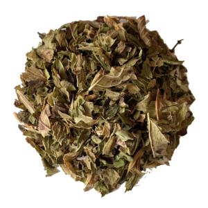 Mint Melody Tea